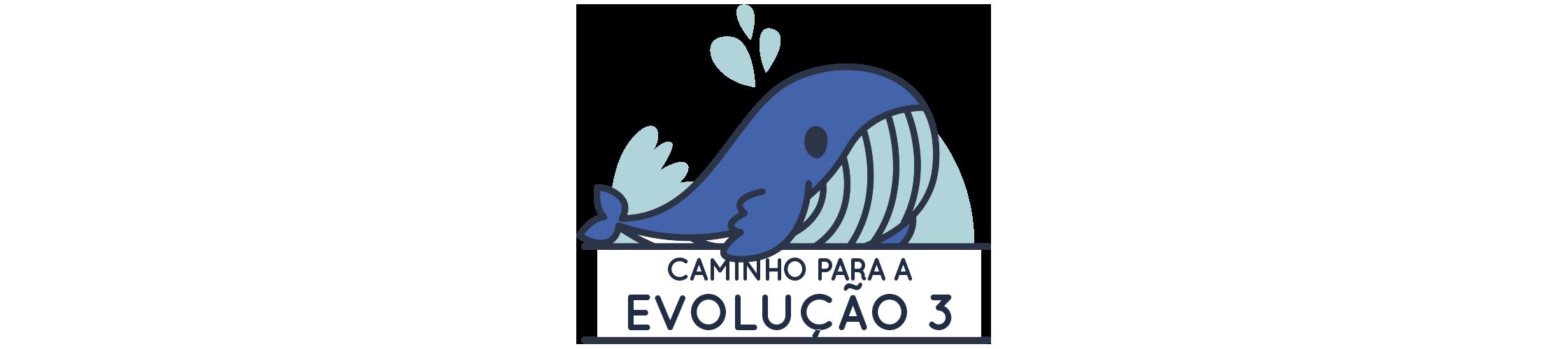 CAMINHO PARA A EVOLUÇÃO 3